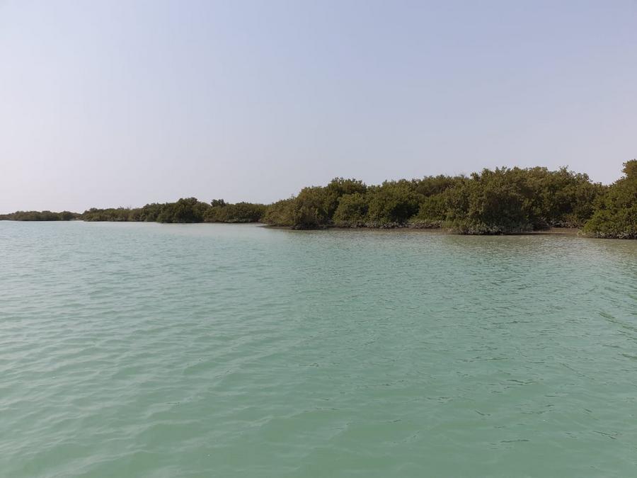 Курорты Ирана-Остров Кешм